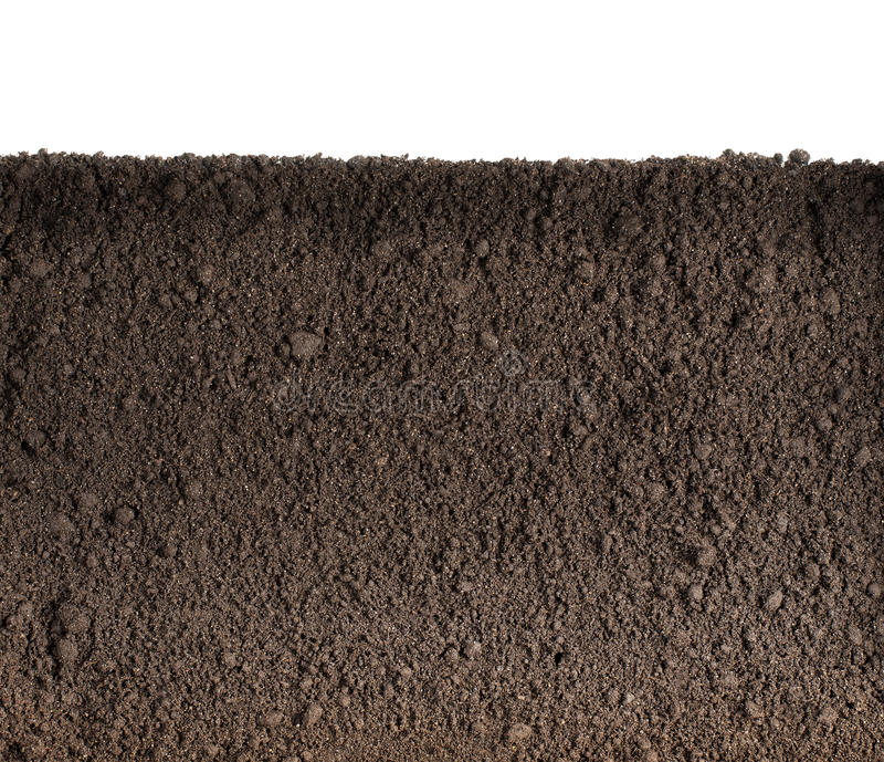 Soil or dirt texture. Isolated