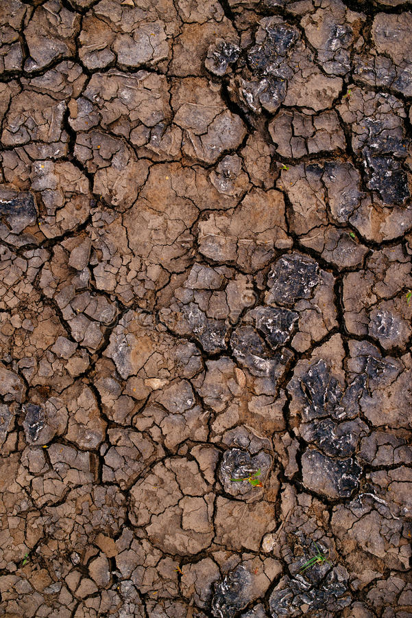Soil drought and mud cracks in dry land stock photo