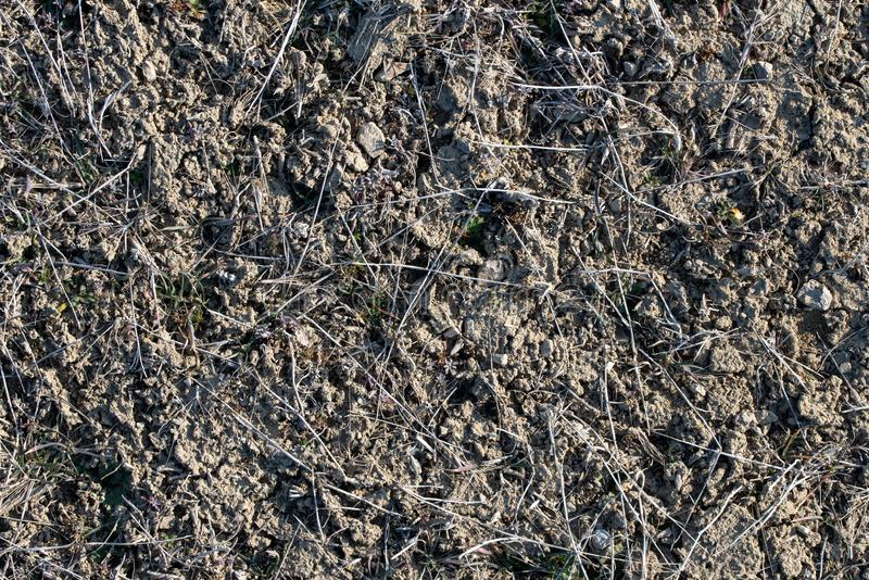 Soil Earth Texture royalty free stock photography