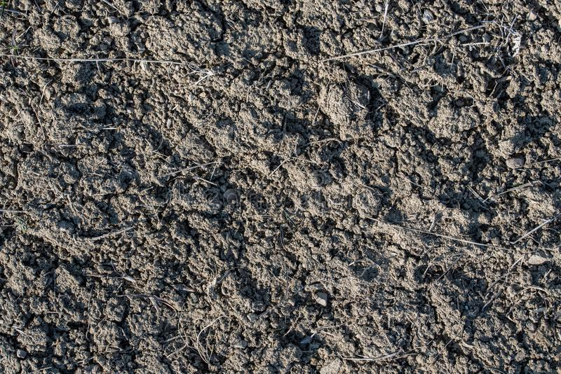 Soil Earth Texture stock photography
