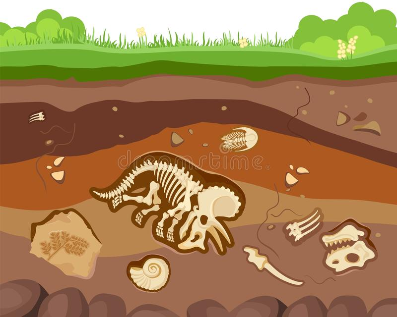 Soil ground layers with buried fossil animals, dinosaur, crustaceans and bones. Vector flat style cartoon illustration stock illustration