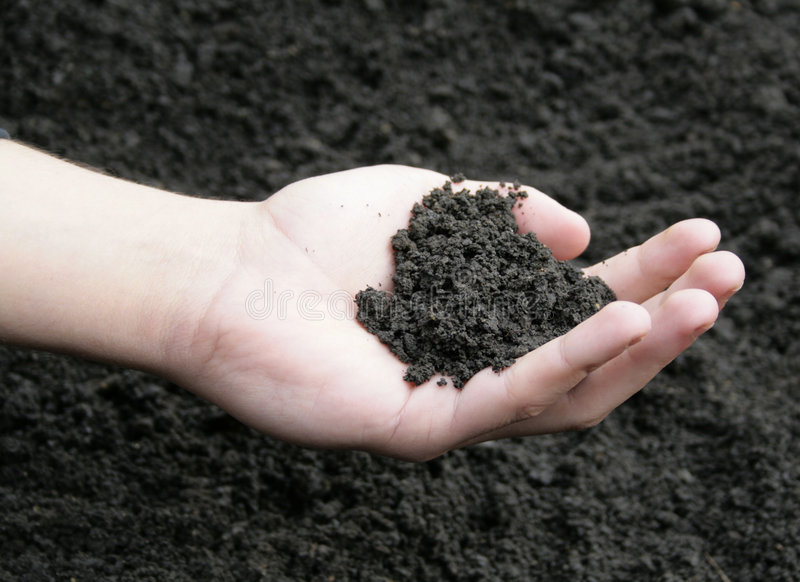 Download Soil in hand stock image. Image of agricultural, plant - 8927253