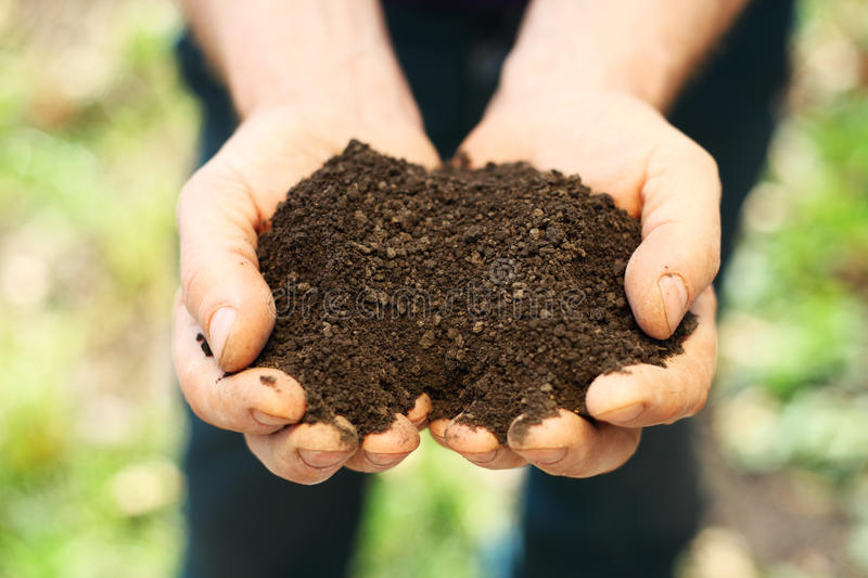 Soil in hands royalty free stock photos