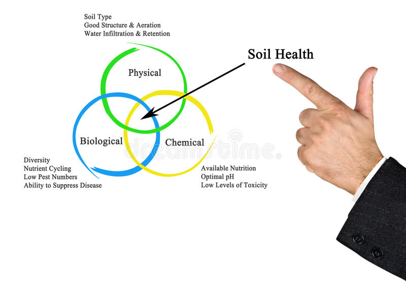 Soil Health. Presenting diagram of Soil Health royalty free stock images