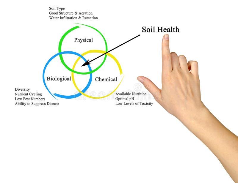 Soil Health. Presenting Diagram of Soil Health royalty free stock photos