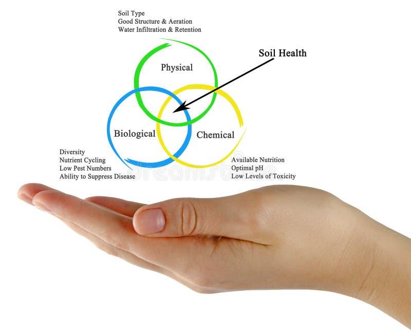 Soil Health. Presenting diagram of Soil Health royalty free stock image