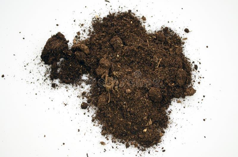 Soil  isolated on white background. Soil detail isolated on white background royalty free stock image