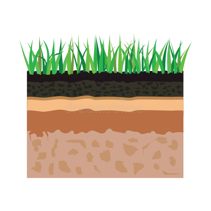 Soil layers with grass vector illustration