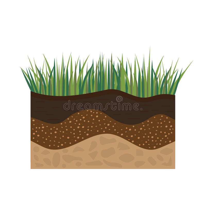 Soil profile with grass royalty free illustration