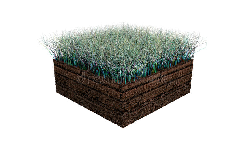 Soil Section Stock Images