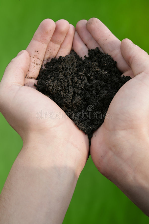 Download Soil test stock photo. Image of agriculture, hold, ground - 8927476