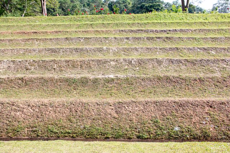 Soil wall, Soil cliff with grass, Soil stairscase royalty free stock images