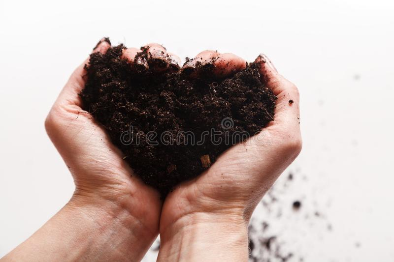 Soil in woman arms against white background close-up. Two hands holding a handful of ground soil. World soil day concept stock images