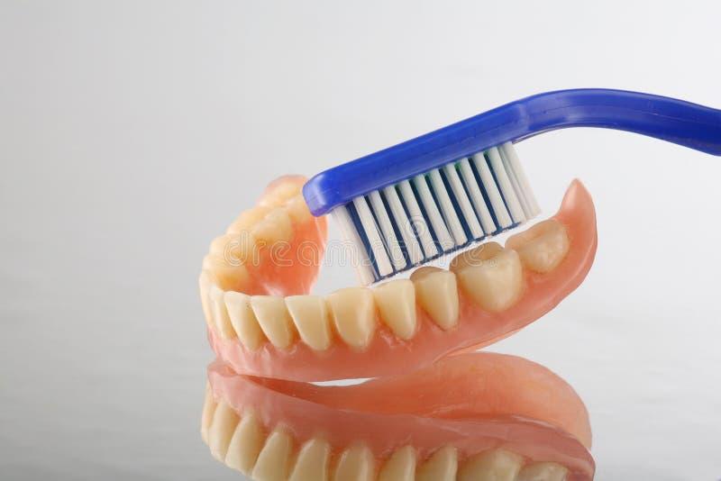 Soin de dents photographie stock libre de droits