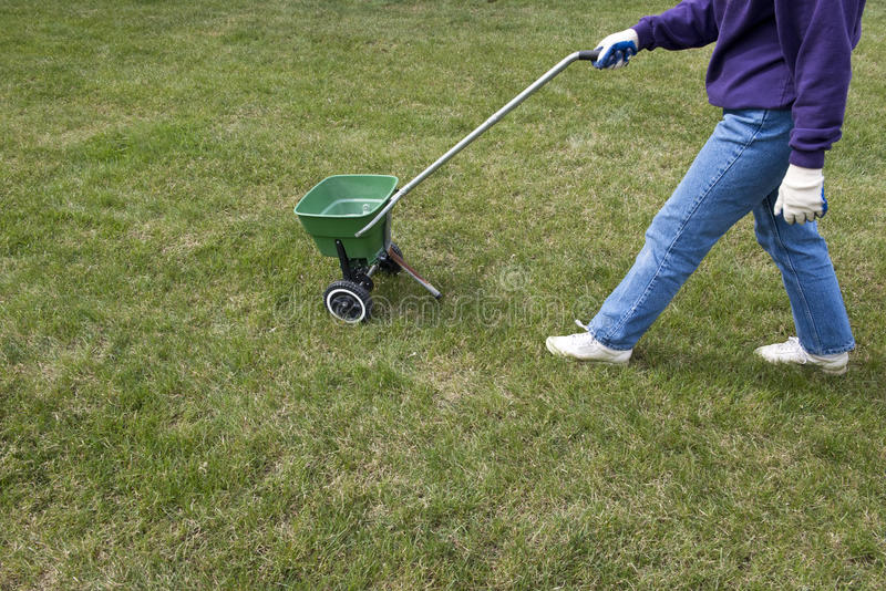 Soin de pelouse d'herbe d'engrais et maintenance à la maison photo stock