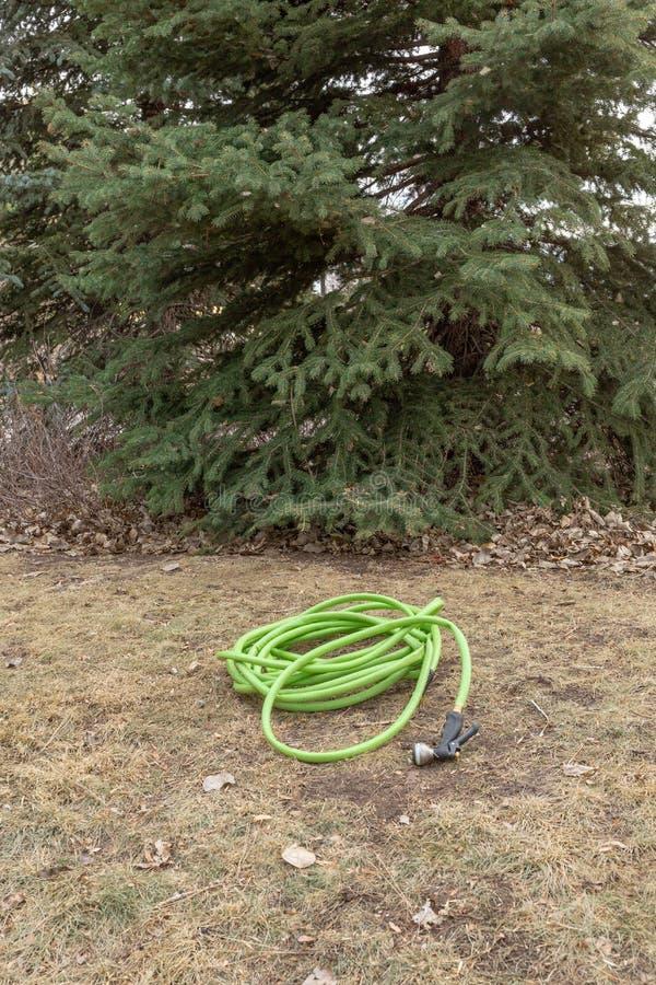 Soin de pelouse d'hiver image libre de droits