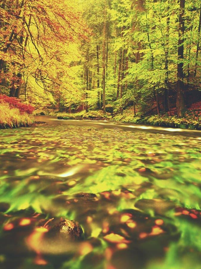 Soirée à la rivière dans des couleurs lumineuses d'automne Humidité en air après jour pluvieux photos stock