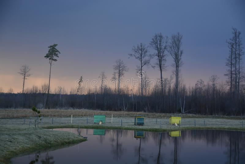 Soirée au lac avec des maisons d'abeille photographie stock
