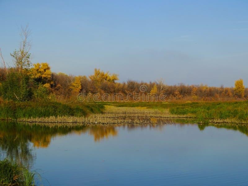 Soirée d'automne sur la rivière images libres de droits