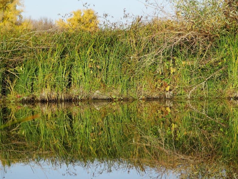 Soirée d'automne sur la rivière photographie stock