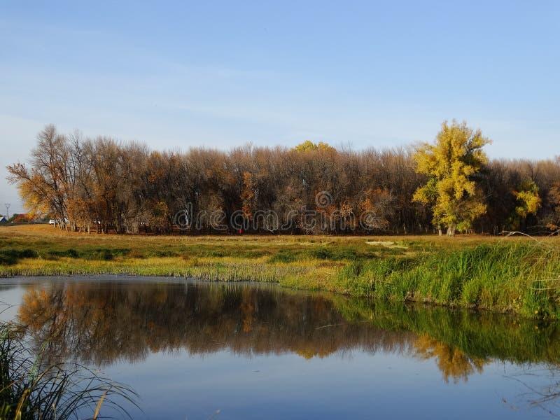 Soirée d'automne sur la rivière photos libres de droits