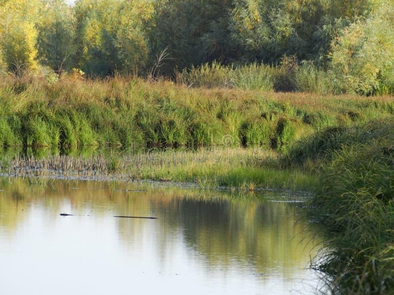 Soirée d'automne sur la rivière photographie stock libre de droits