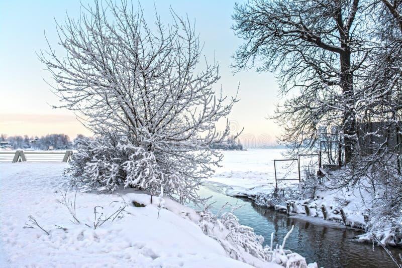 Soirée de Frosty January photographie stock