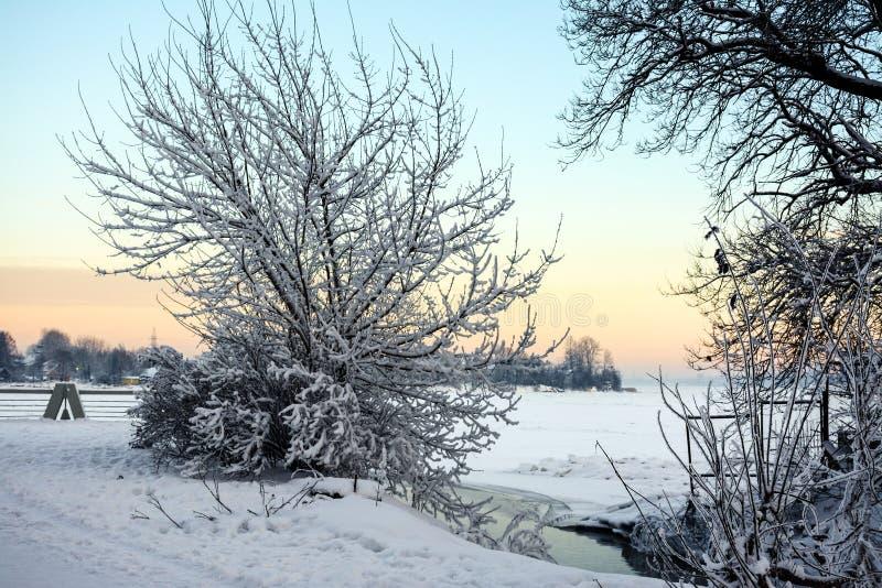 Soirée de Frosty January image libre de droits