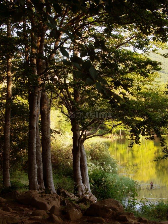 Soirée de Lakeside Lago Pranda - lac en province de Reggio Emilia, secteur d'Emilia Romagna, Italie Beau parc national images stock