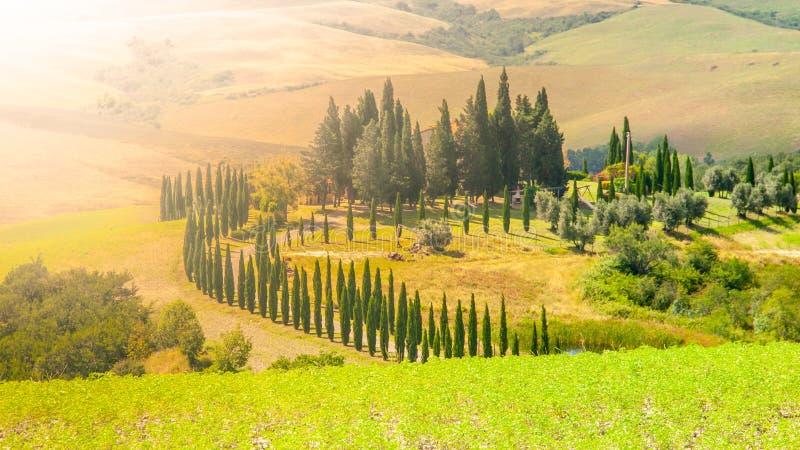 Soirée en Toscane Paysage de Hilly Tuscan avec l'allée d'arbres de cyprès et la maison de ferme, Italie image stock