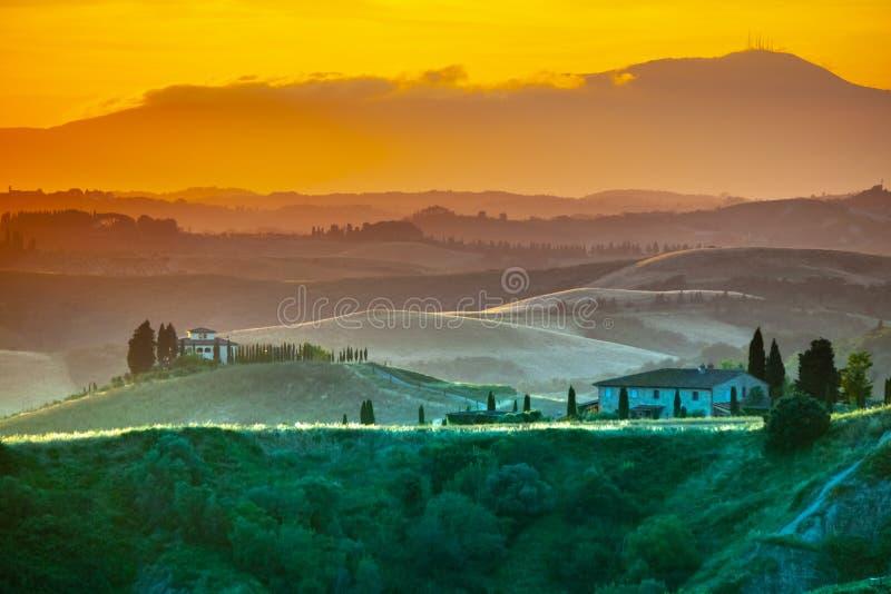 Soirée en Toscane Paysage de Hilly Tuscan dans l'humeur d'or au temps de coucher du soleil avec des silhouettes des cyprès et des images libres de droits