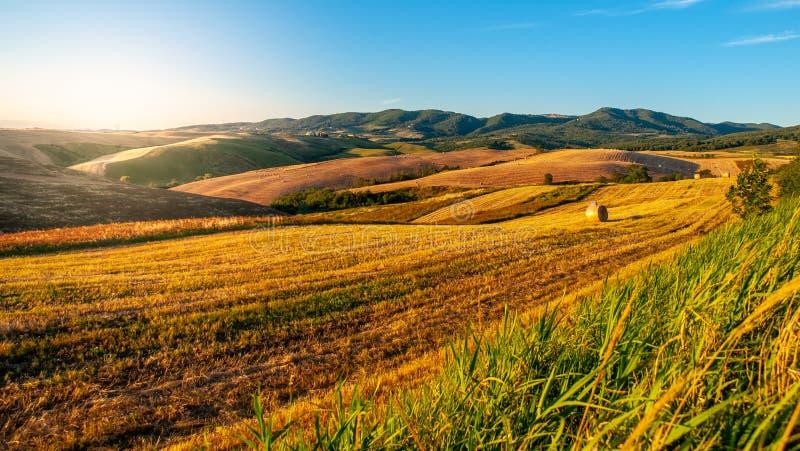 Soirée en Toscane Paysage de Hilly Tuscan la soirée ensoleillée d'été image libre de droits