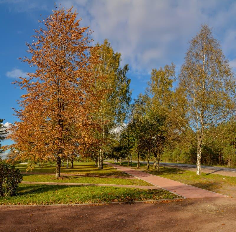 Soirée ensoleillée d'automne dans le pays Ombres du coucher de soleil photo libre de droits