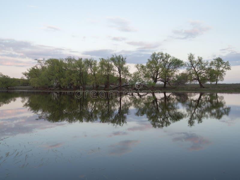 Soirée sur la rivière images libres de droits