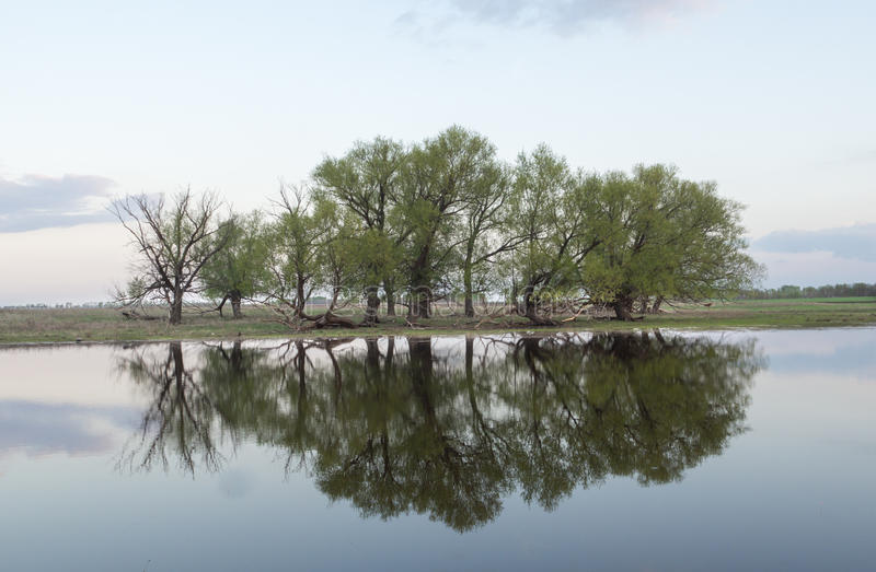 Soirée sur la rivière image libre de droits