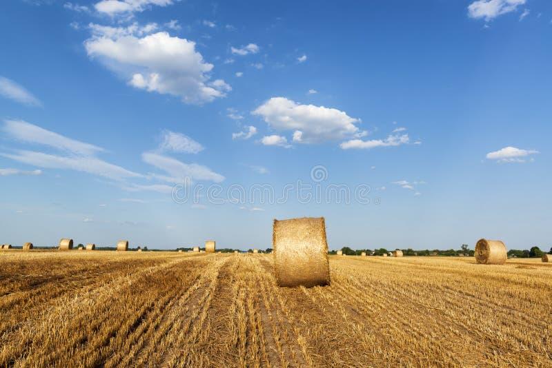 Soirée sur un champ avec des balles de foin photos libres de droits