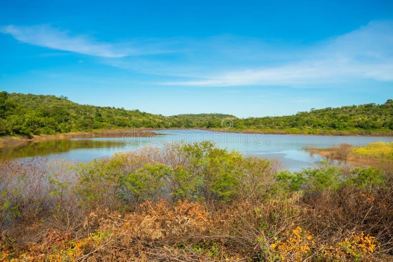 Soizao水库看法在一个被保存的Caatinga森林的中间在奥埃拉斯,巴西乡下  免版税库存照片