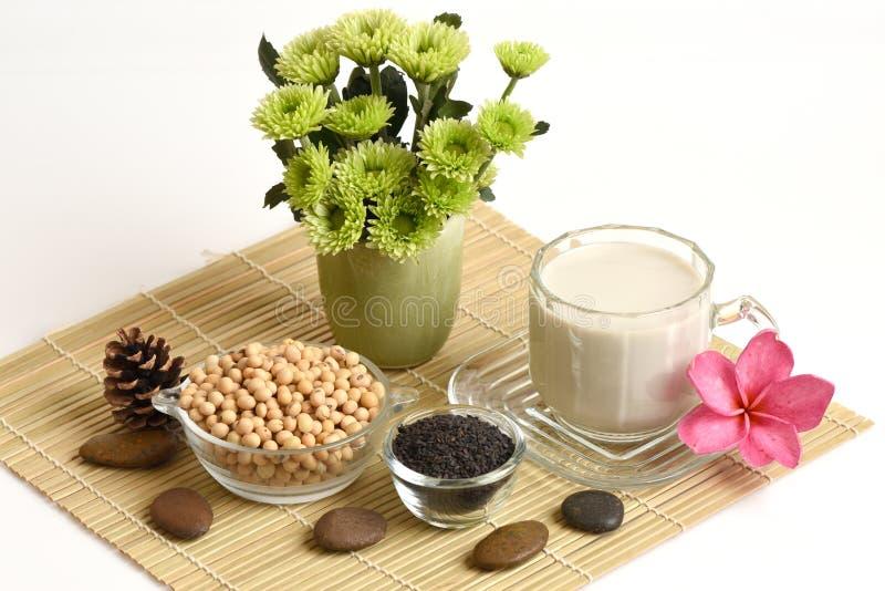 Sojabönan mjölkar, sojabönor, svart sesamfrö och spirade råriers (GABA) royaltyfria bilder