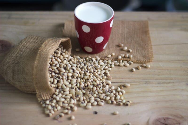 Sojabönor mjölkar i exponeringsglas- och sojabönaböna på trätabellkopieringsutrymme fotografering för bildbyråer