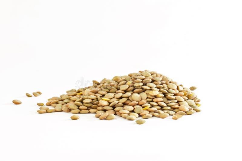 Sojabohnenöl lizenzfreies stockbild