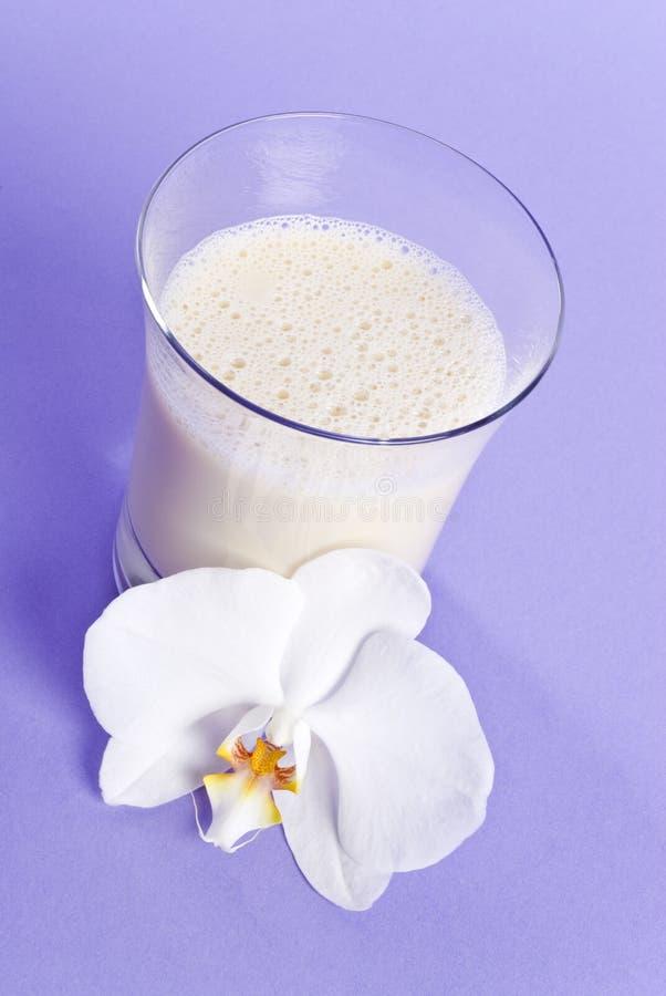 Sojabohnenöl-Milch-Serie lizenzfreies stockfoto