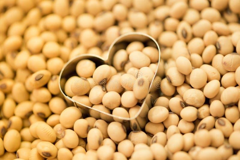 Sojabonen in de vorm van de hartdoos royalty-vrije stock foto