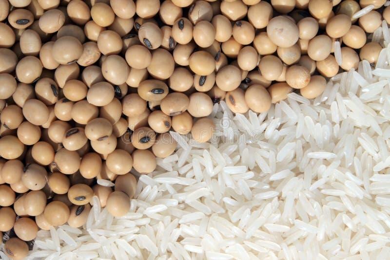 Sojabonen en witte rijst stock foto