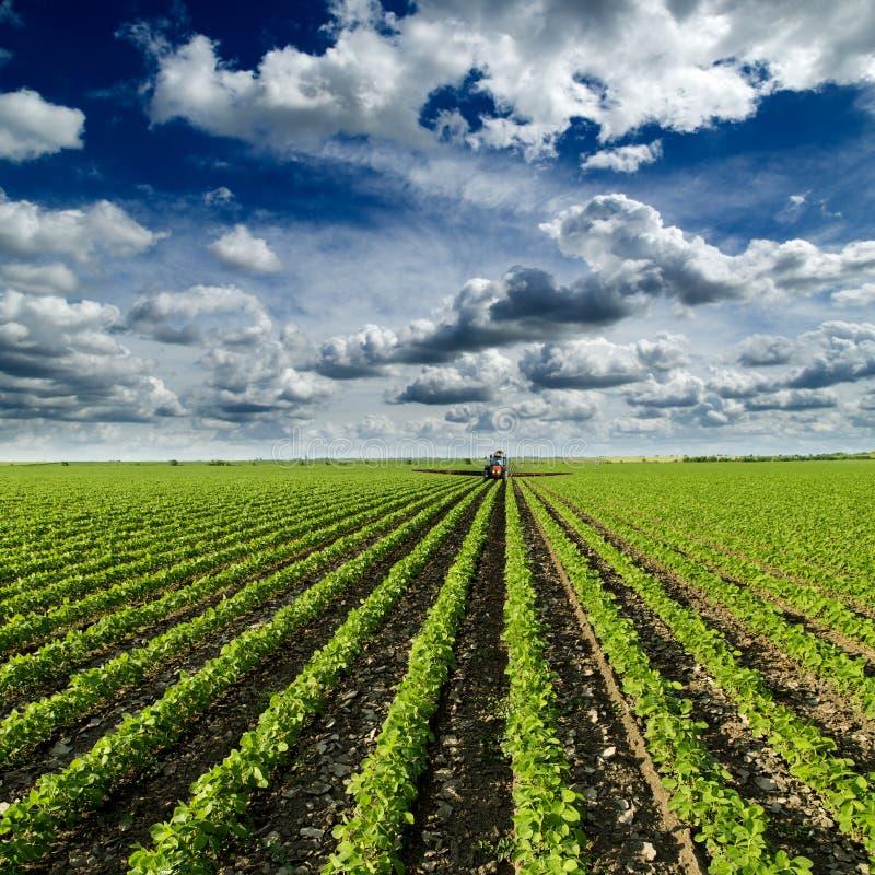 Sojaboongebied die bij lentetijd, tractor bespuitende gewassen rijpen stock foto