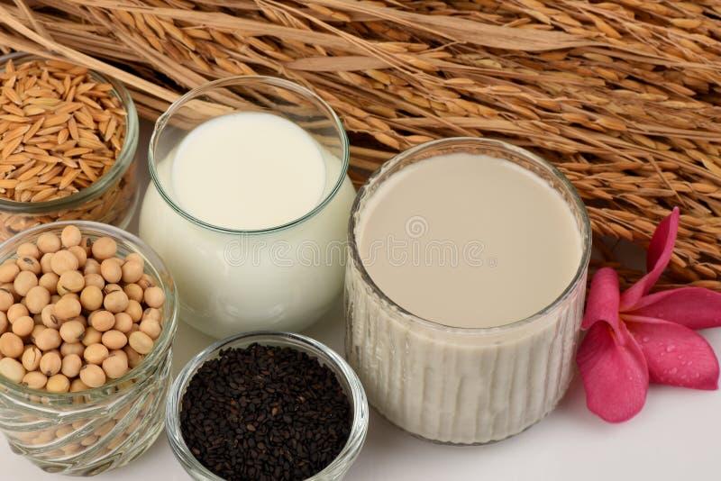 Sojaboonmelk, soja, Zwarte Sesamzaden en Ontkiemde ongepelde rijst (GABA) royalty-vrije stock afbeeldingen