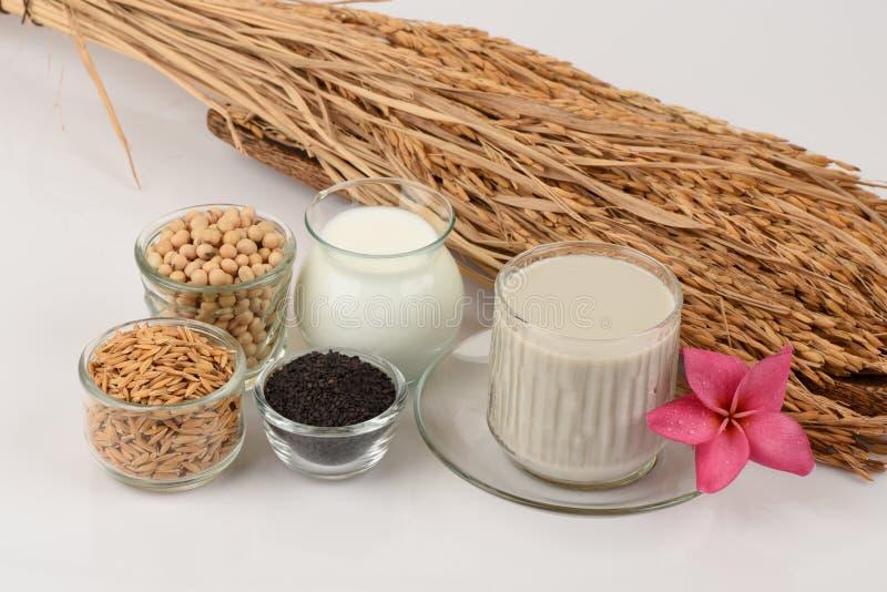 Sojaboonmelk, soja, Zwarte Sesamzaden en Ontkiemde ongepelde rijst (GABA) stock afbeelding