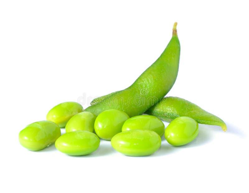Sojas verdes foto de archivo libre de regalías