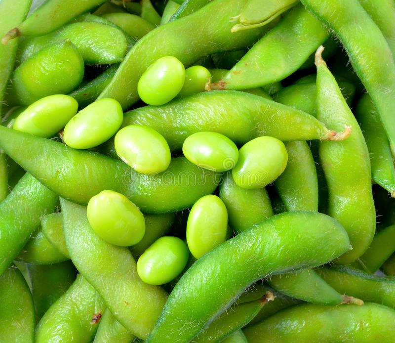 Sojas verdes imagen de archivo libre de regalías