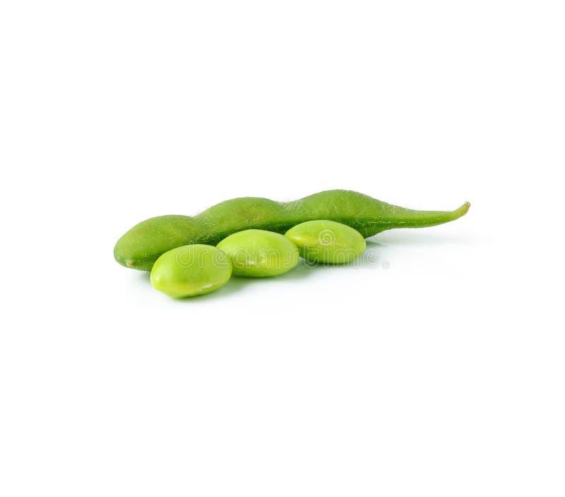 Sojas verdes fotos de archivo