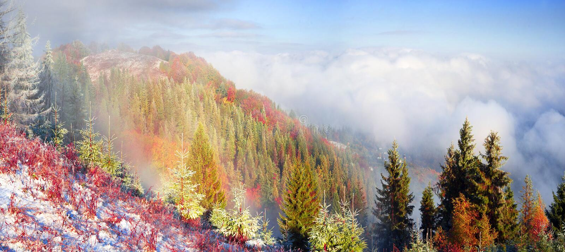 Sokalrand in de herfst stock afbeeldingen